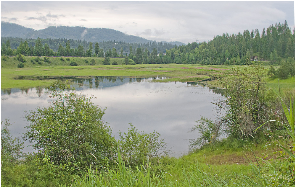 Pend Oreille Wildlife Refuge
