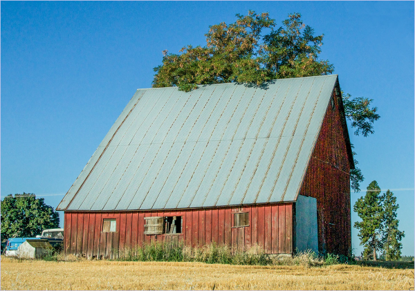 Steep Barn