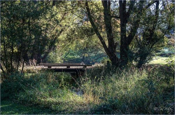 Country Bridge