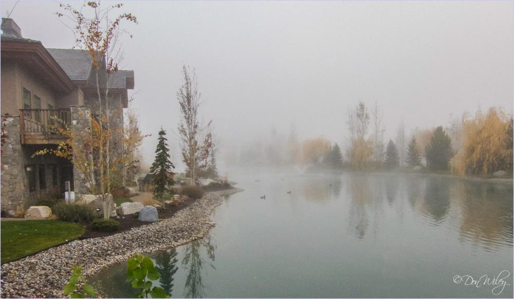 Fog On Wanderemere Pond