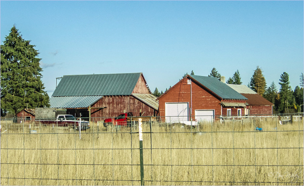 A Fenced Barnyard and Garage