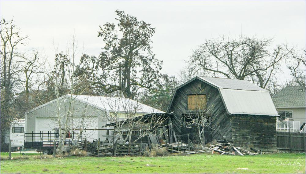 Construcrtion/Destruction