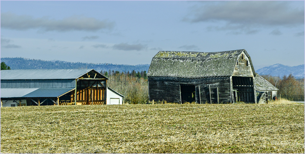Old Barn, New Barn