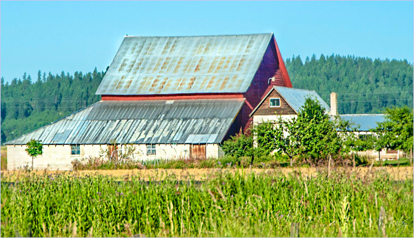 A Very Close Barn