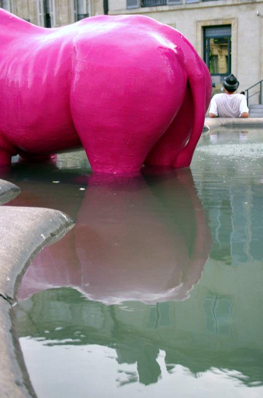 rhino rose à l'eau...