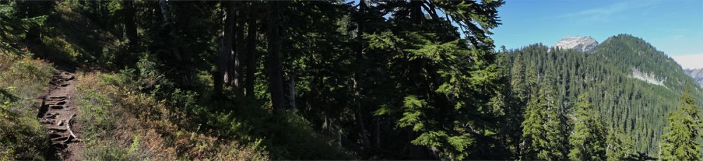 Trail Panorama