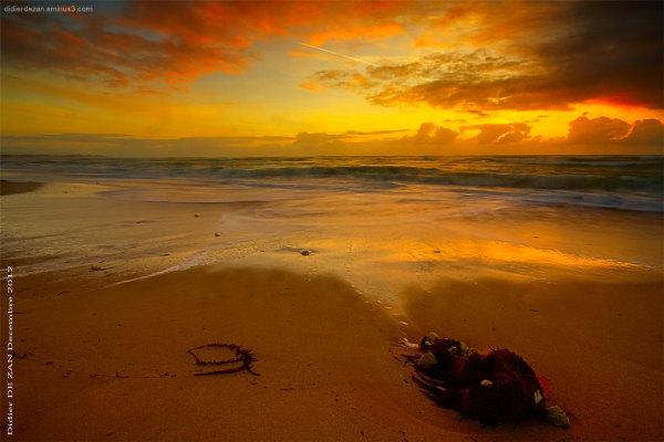Ocean ... .. ..