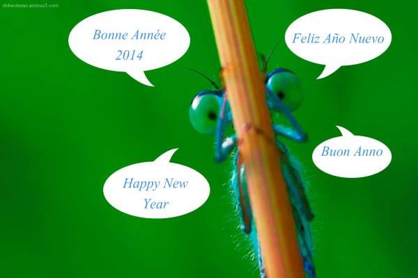 Bonne Année .....