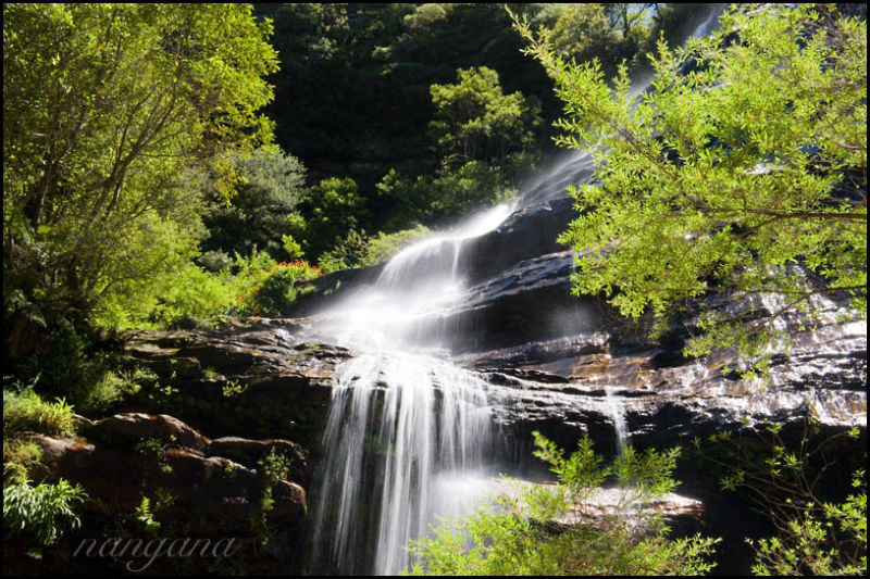 leura falls blue mountains