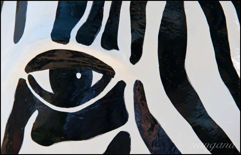 eye and stripes