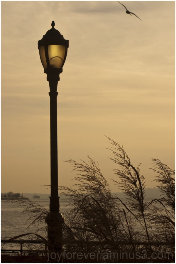 Battery-Park Manhattan New-York lamp silhouette