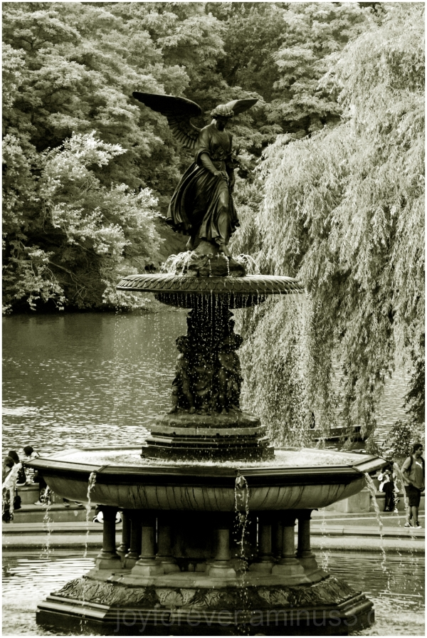 Bethesda fountain Central-Park New-York-City B&W