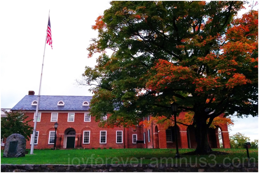 Fairfax Virginia courthouse building fall tree red