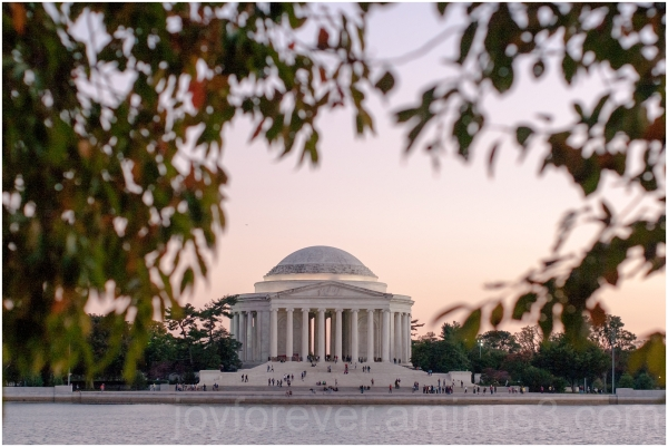 Jefferson Memorial Tidal-Basin leaves water