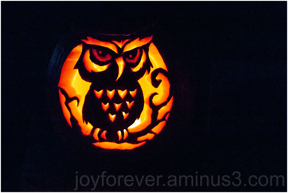 halloween pumpkin art jack-o-lantern owl carving