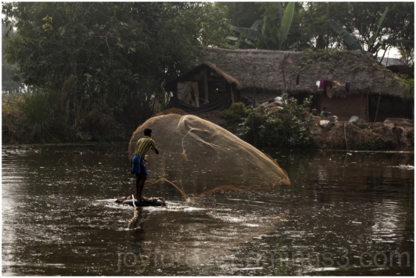 fishing net pond water net fish village india