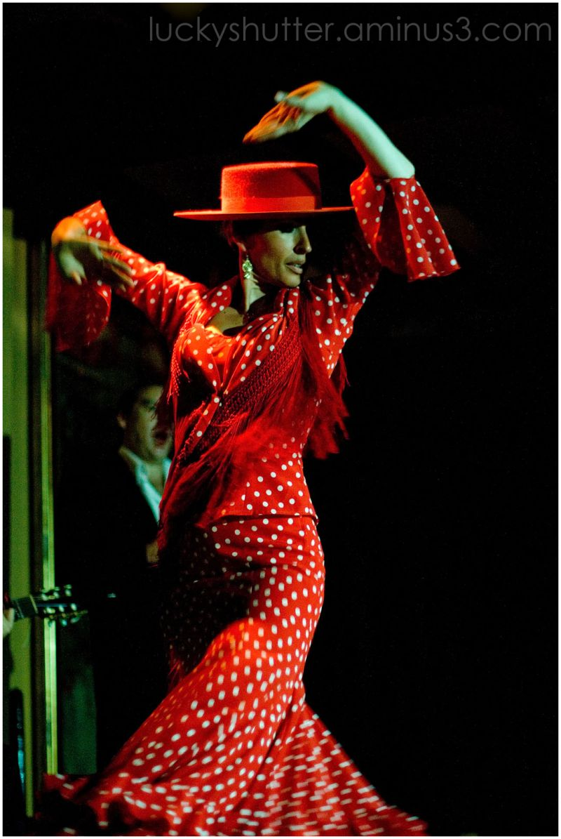 a flamenco dancer in a red dress