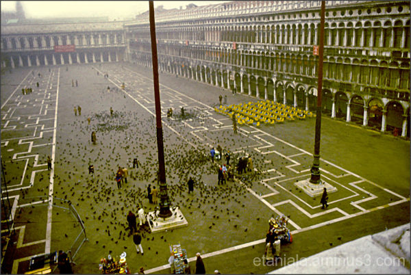 After the flood in Piazza San Marco, Venice