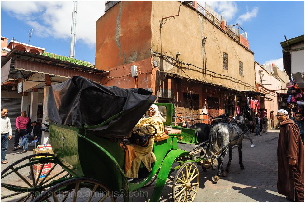 Carruaje en Marrakech