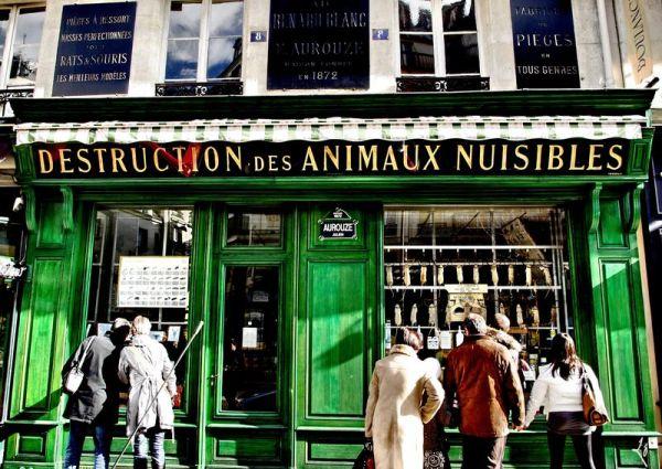 Regard insolite sur les rues parisiennes...