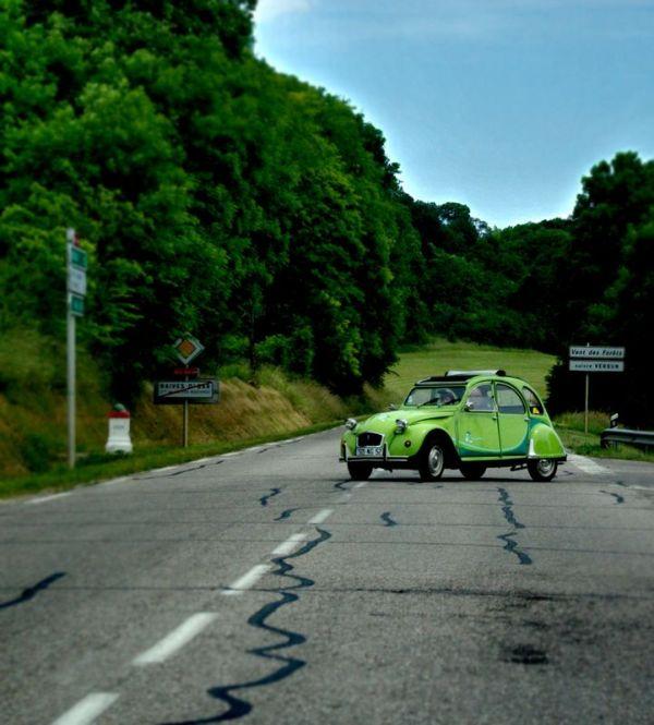 Le crapaud vert...