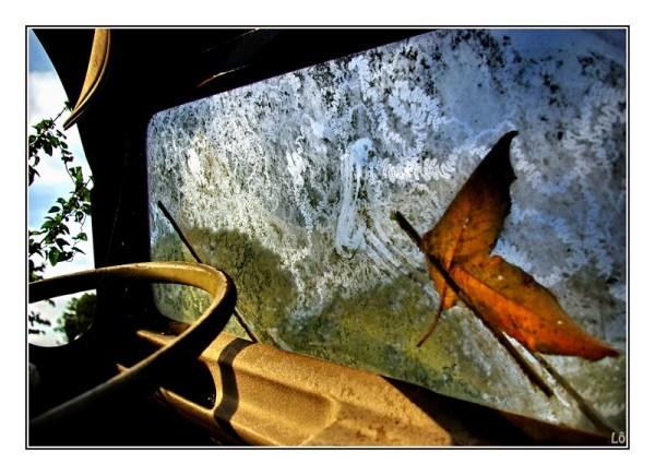 Les ailes du désir ....