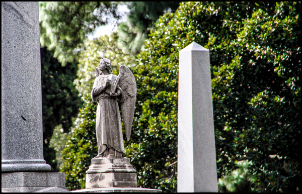 Melbourne General Cemetery 4