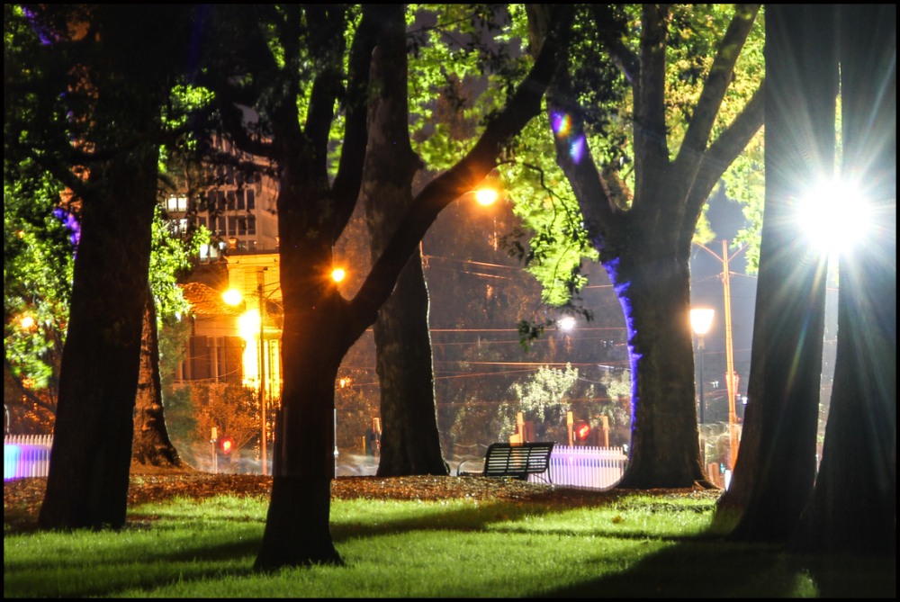 Night time in the park 2