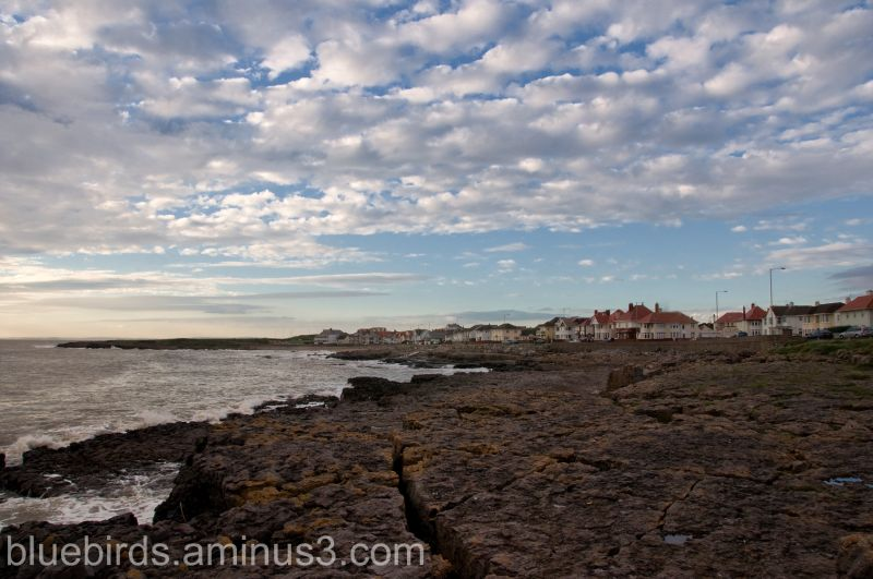 Porthcawl - Coastal View