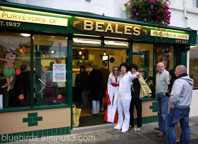 There's a guy down the chip shop swears he's Elvis