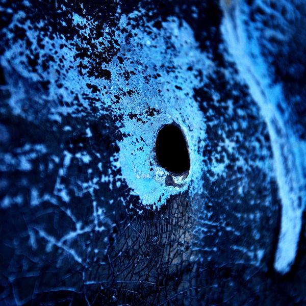 Pachyderm eye...