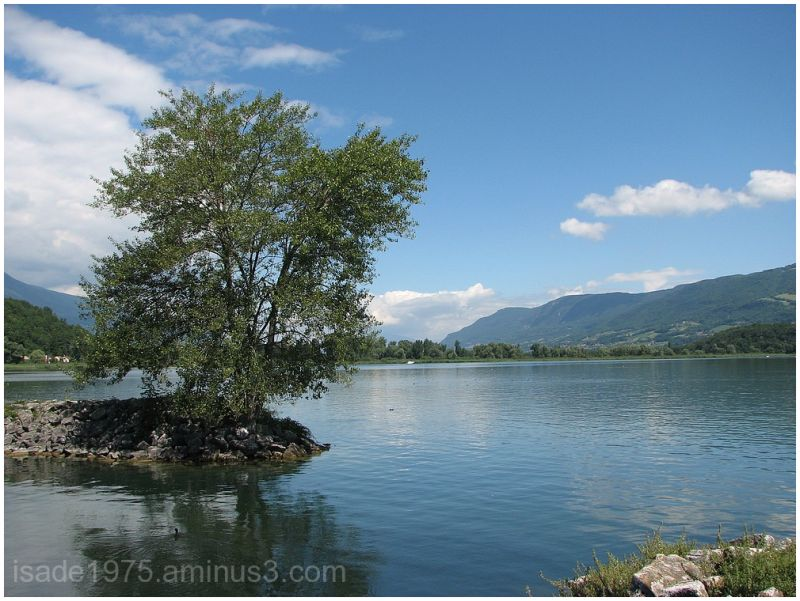 lake summer tree travel France