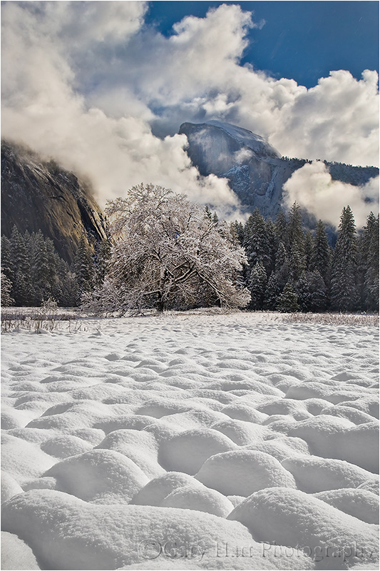 Winter Blanket, Cook's Meadow, Yosemite