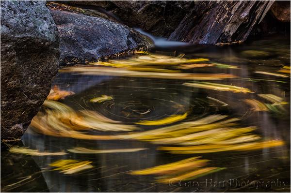 Autumn Swirl, Bridalveil Creek, Yosemite