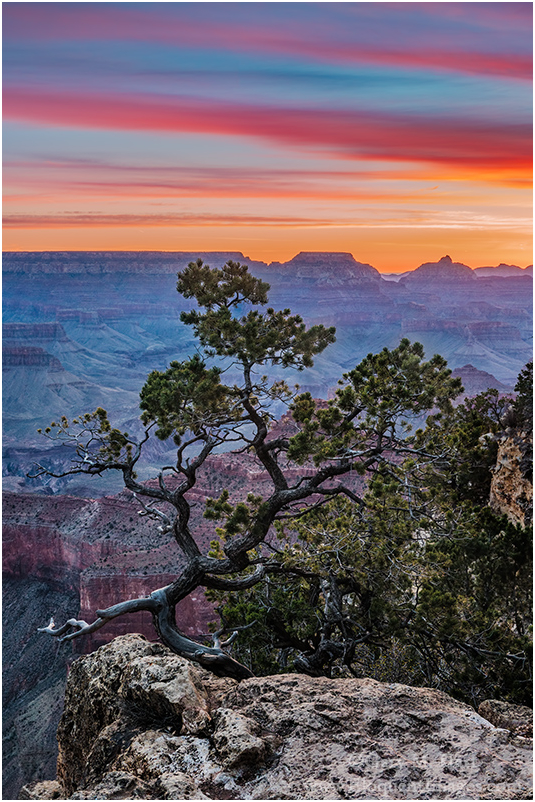Grand Morning, Yavapai Point, Grand Canyon
