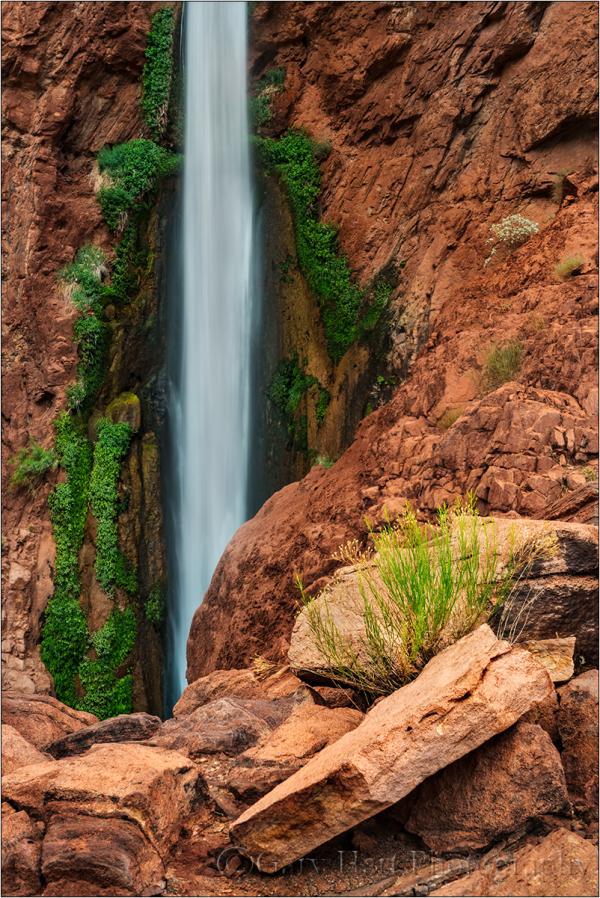 Nature's Garden, Deer Creek Fall, Grand Canyon