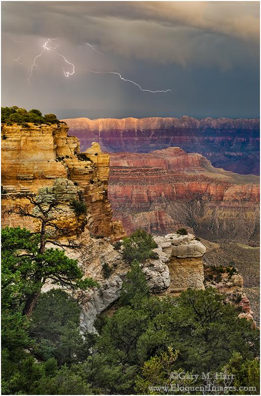 Electric Scribble, Grand Canyon Lodge, North Rim