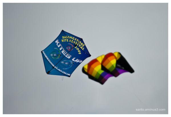 Basingstoke Kite Festival - 1