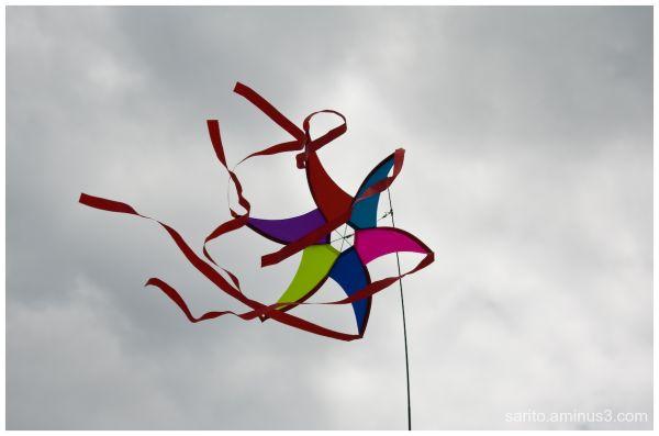 Basingstoke Kite Festival - 4