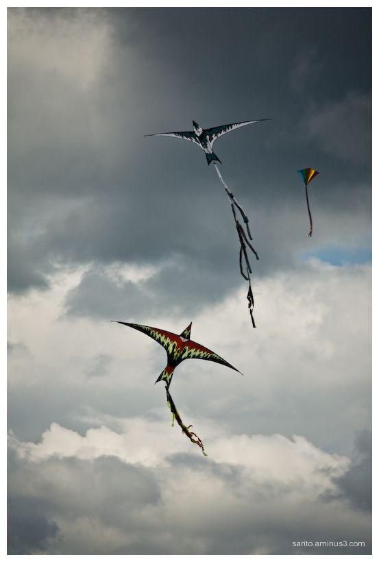 Basingstoke Kite Festival - 9