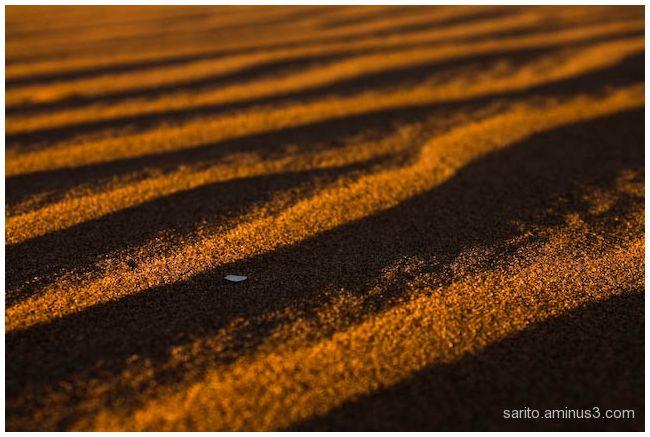 Sand ripple - 1