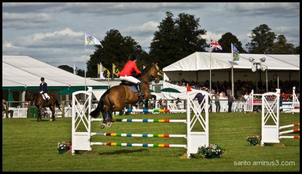 Horse jump - 2
