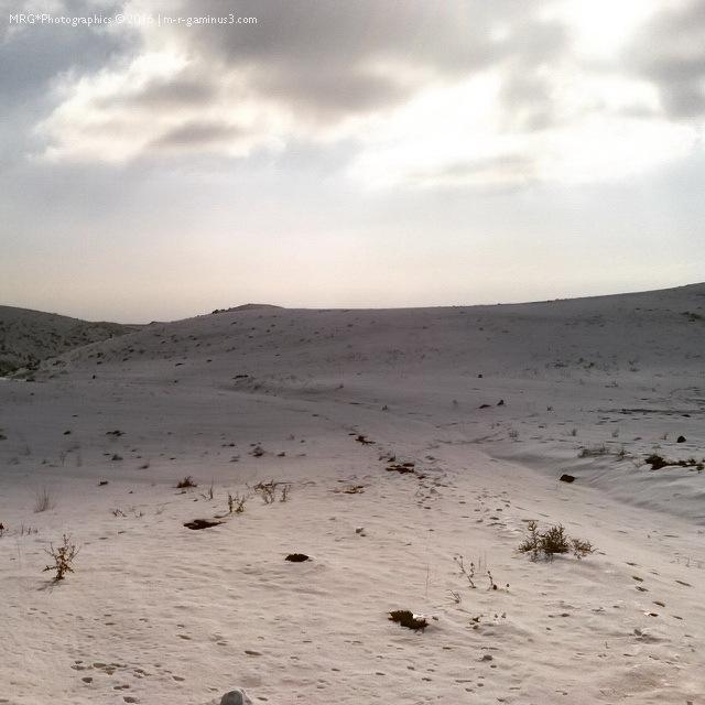 Snow Planet II