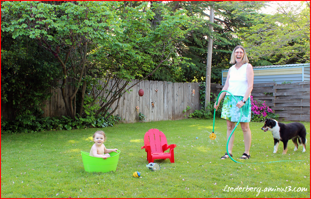 Fun in the backyard