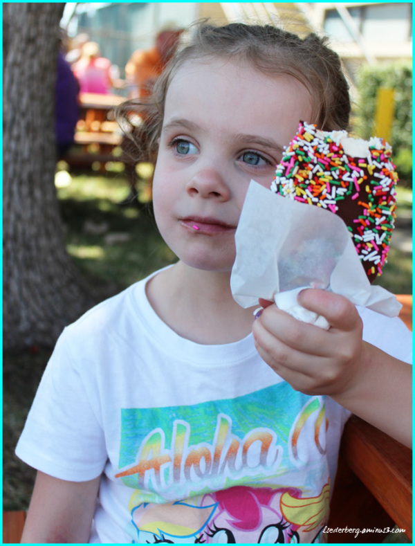 Ice Cream at the Fair