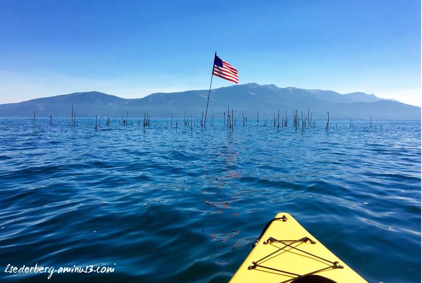 Kayak to the island