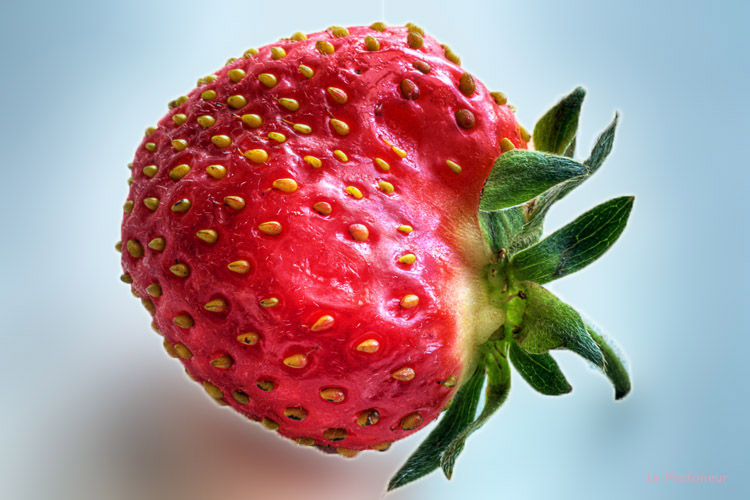 Strawberry - Fraise
