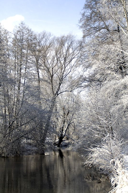 snow, winter, germany, park, river