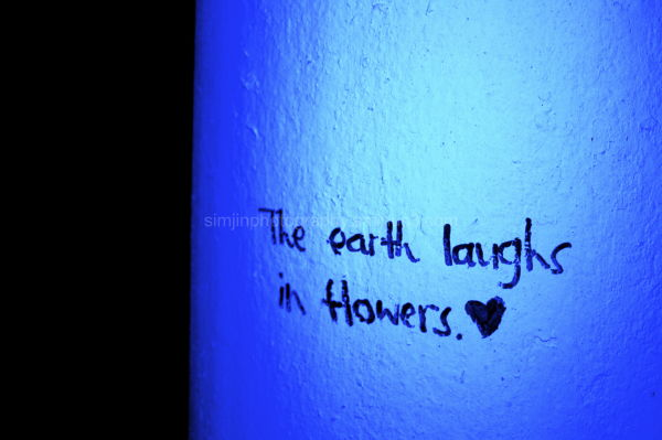 The earth laughs in Flowers*