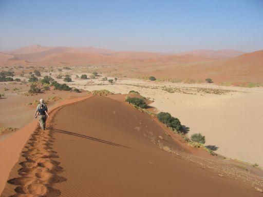 les dunes de sossuvlei, en Namibie